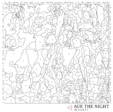 sue-the-night
