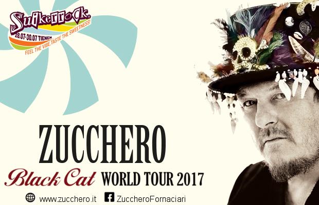 zuchero_black-cat-124950
