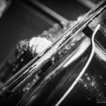 feest-in-het-park-2014-kitty-daisy-en-lewis-6